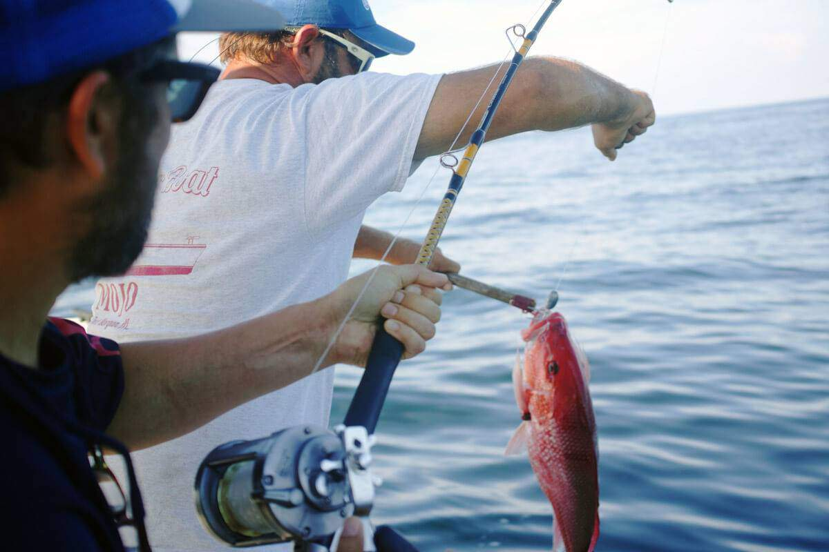 Gift Experiences: Coastal fishing trip Barcelona