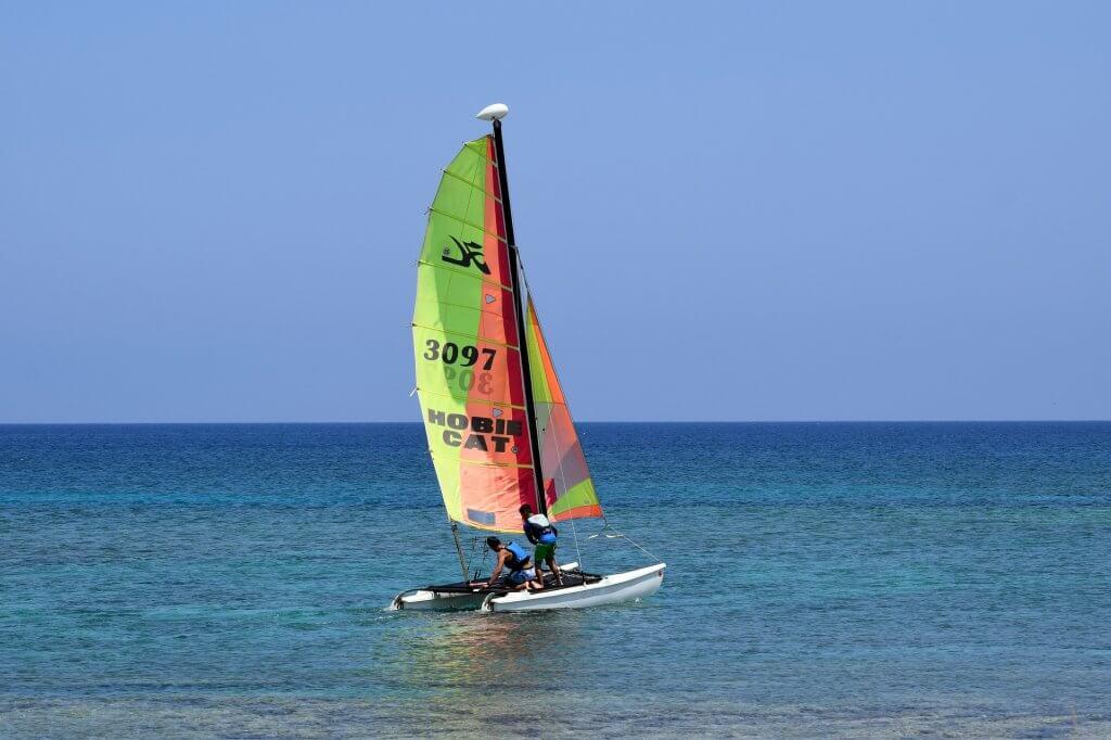 catamaran de competicion regata